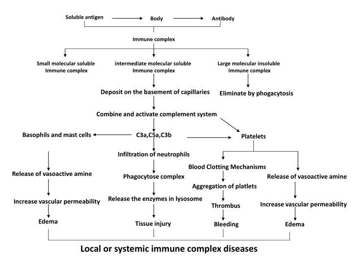 Soluble antigen