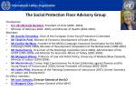 the social protection floor advisory group