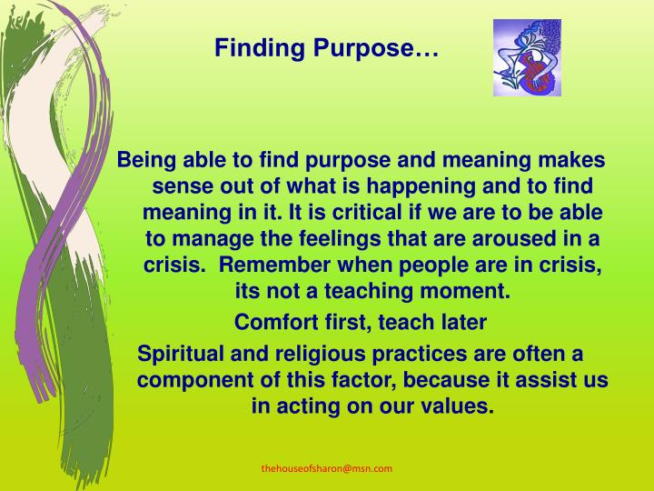 Finding Purpose…