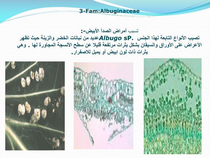 3-Fam:Albuginaceae