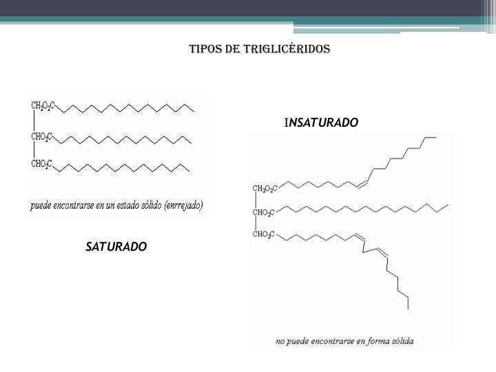 TIPOS DE TRIGLICÉRIDOS