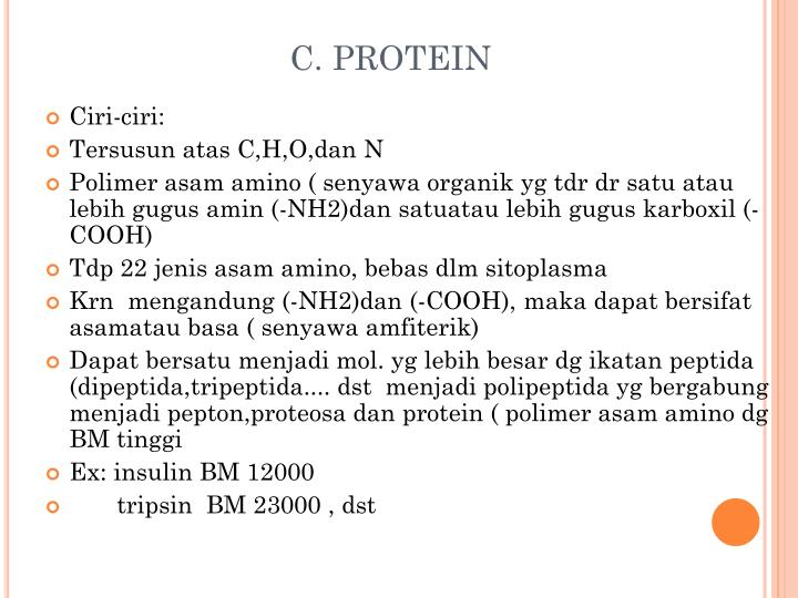 C. PROTEIN