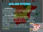 an lisis interno1