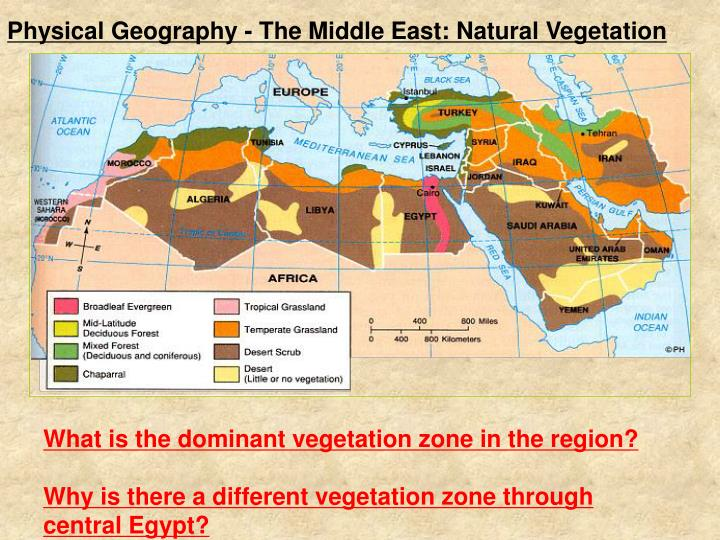 why do middle eastern and north