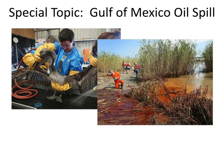 special topic gulf of mexico oil spill n.