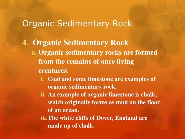 Organic Sedimentary Rock