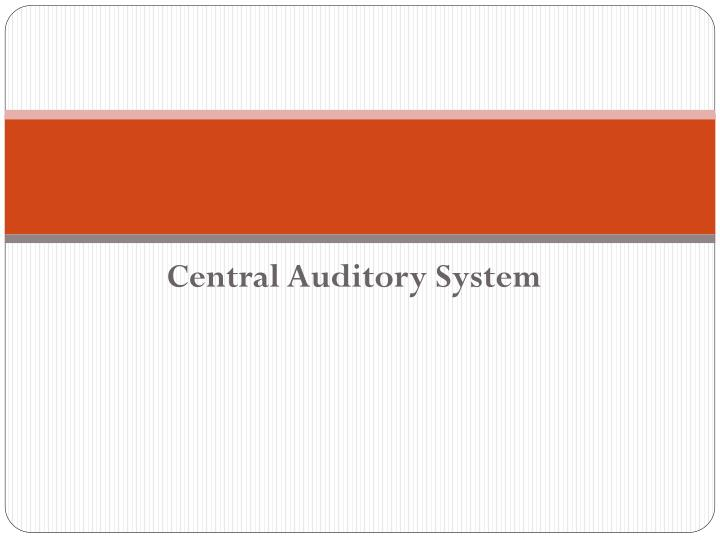 central auditory system n.