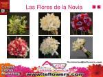 las flores de la novia1