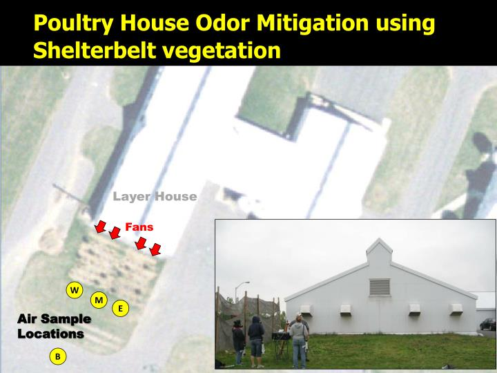 Poultry House Odor Mitigation using