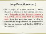 loop detection cont