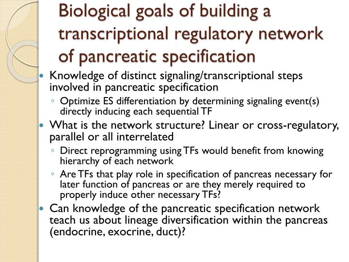 Biological goals of building a transcriptional regulatory network of pancreatic specification