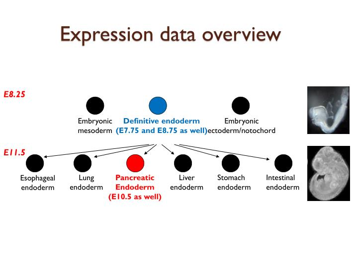 Expression data overview