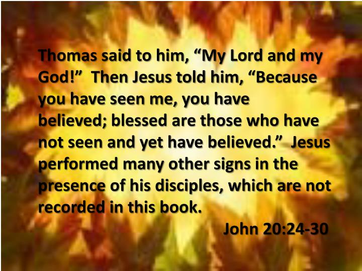 """Thomas said to him, """"My Lord and my God!""""  Then Jesus told him,""""Because you have seen me, you have believed;blessed are those who have not seen and yet have believed.""""  Jesus performed many other signsin the presence of his disciples, which are not recorded in this book."""