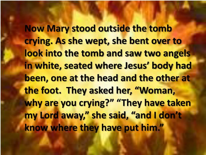 """Now Mary stood outside the tomb crying. As she wept, she bent over to look into the tomb and saw two angels in white, seated where Jesus' body had been, one at the head and the other at the foot.  They asked her, """"Woman, why are you crying"""