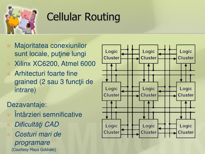 Cellular Routing
