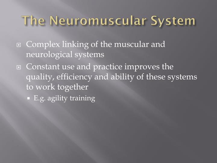 The Neuromuscular System