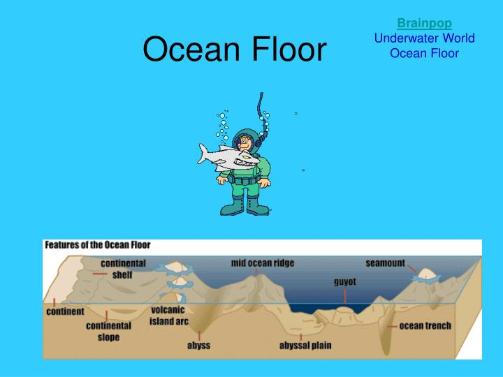 Ppt ocean floor powerpoint presentation id 1982676 for Ocean floor description