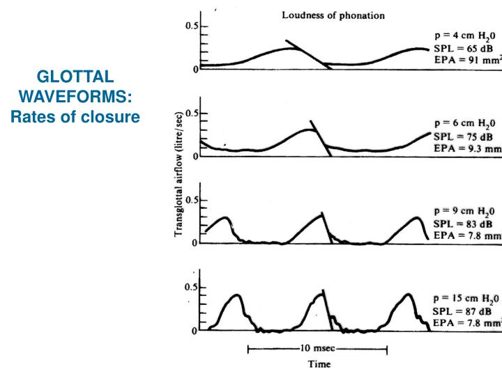GLOTTAL WAVEFORMS:  Rates of closure