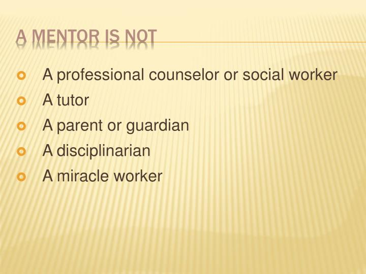A professional counselor or social worker