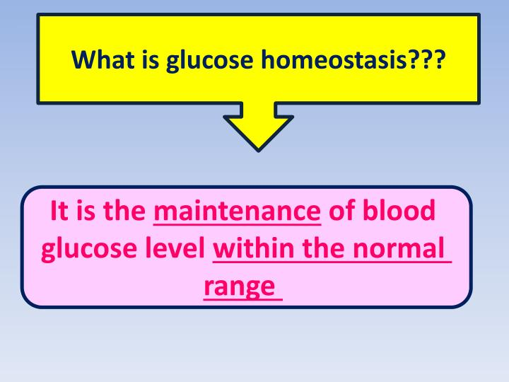 What is glucose homeostasis???