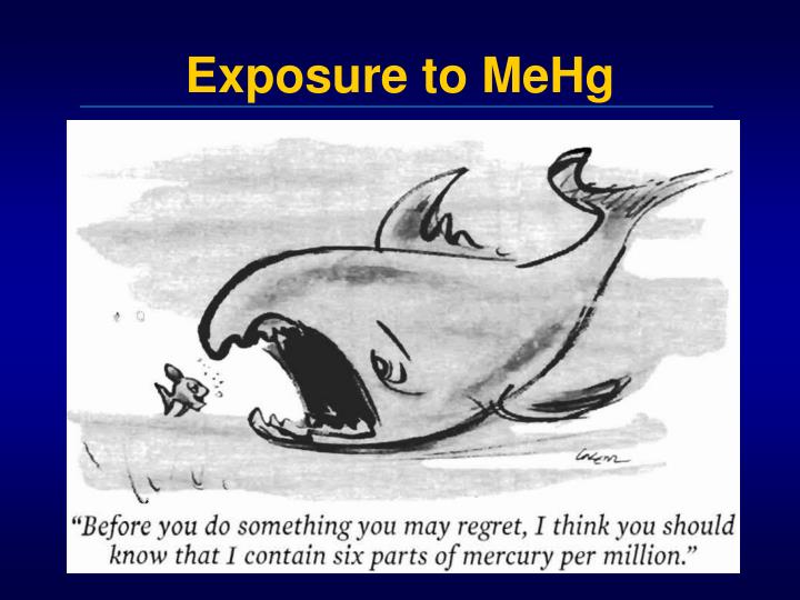 Exposure to mehg