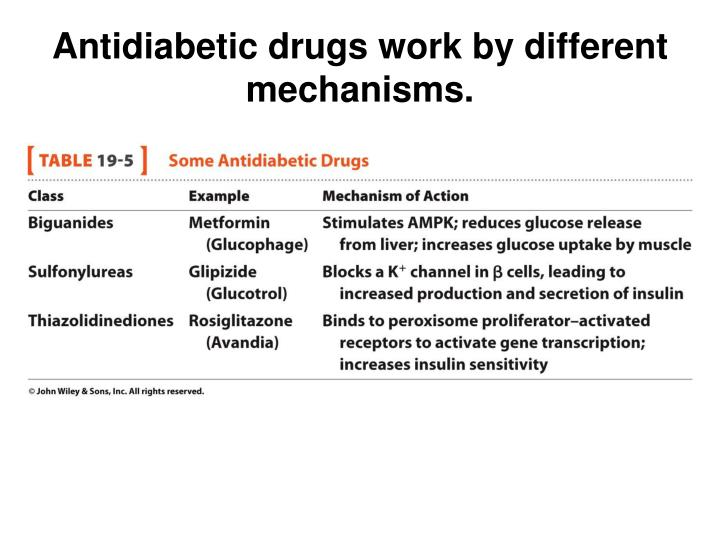 Antidiabetic drugs work by different mechanisms.