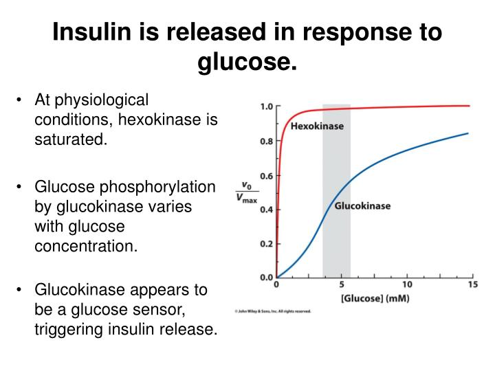 Insulin is released in response to glucose.