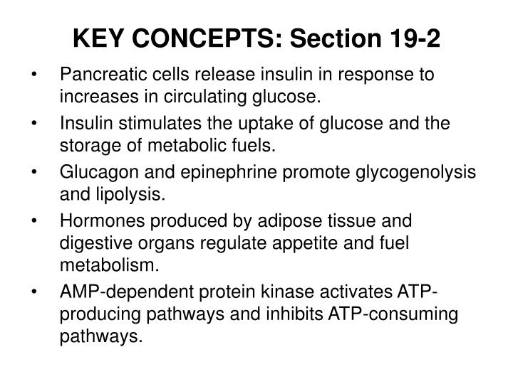 KEY CONCEPTS: Section 19-2