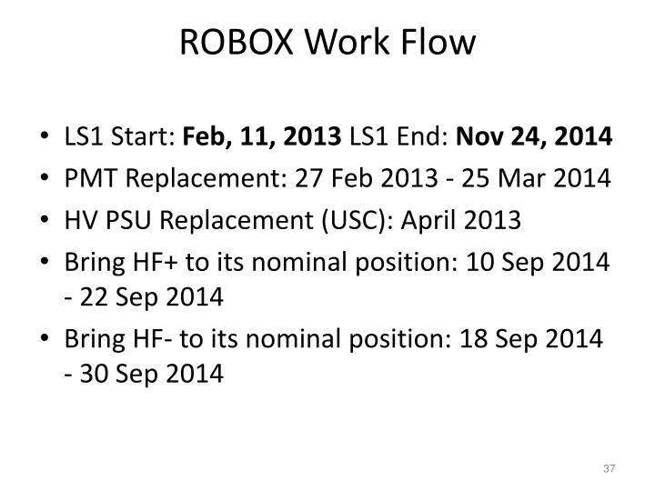 ROBOX Work Flow