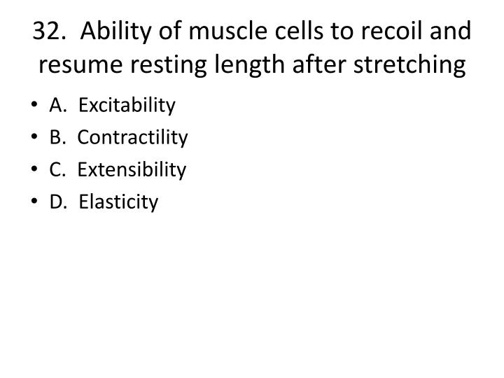 32.  Ability of muscle cells to recoil and resume resting length after stretching