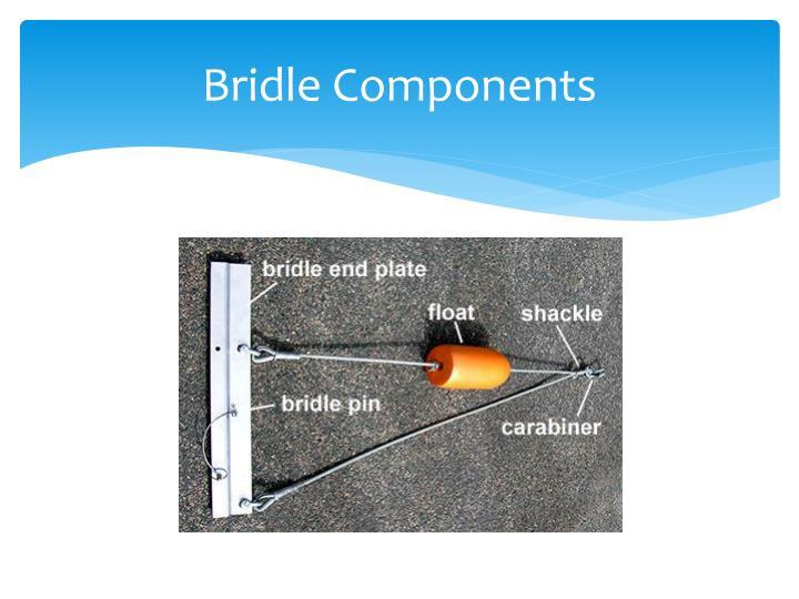 Bridle Components