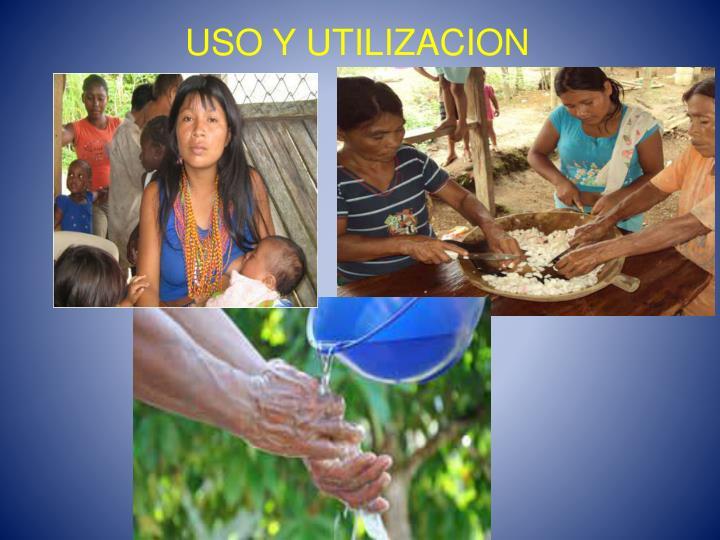 USO Y UTILIZACION