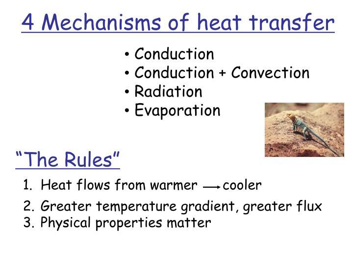 Heat flows from warmer      cooler