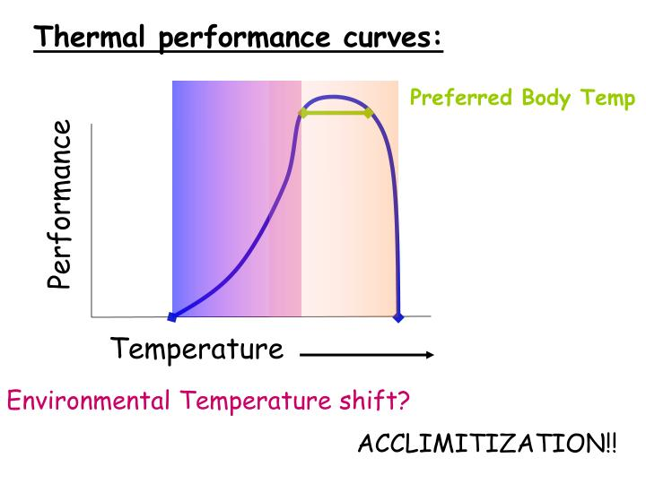 Thermal performance curves: