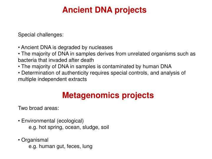 Ancient DNA projects