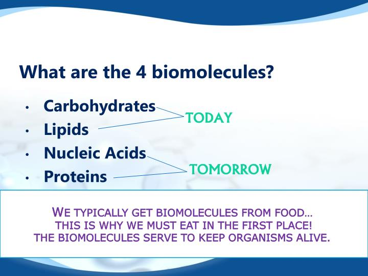 what are biomolecules