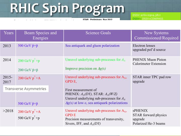 RHIC Spin Program