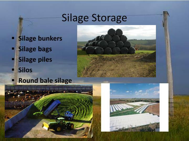 Silage Storage