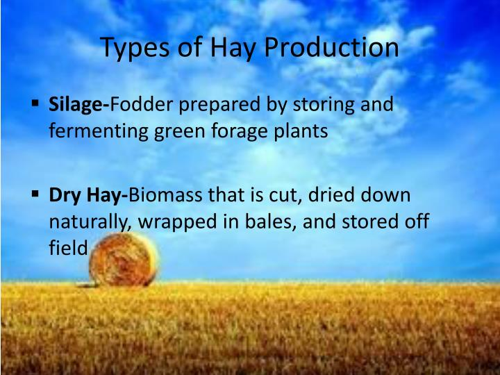Types of hay production