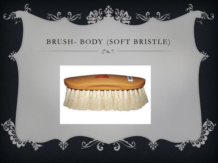 Brush- body (soft bristle)