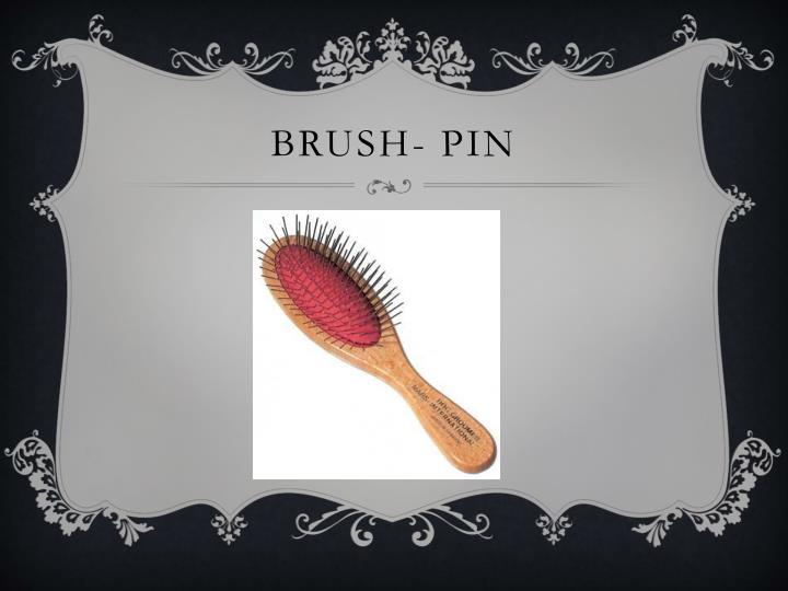 Brush- pin