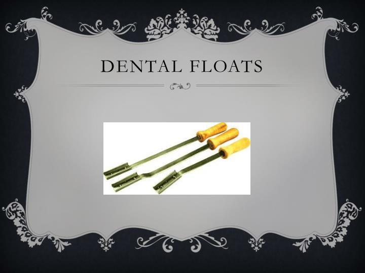 Dental Floats