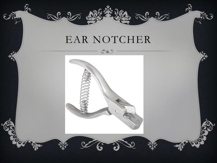 Ear notcher