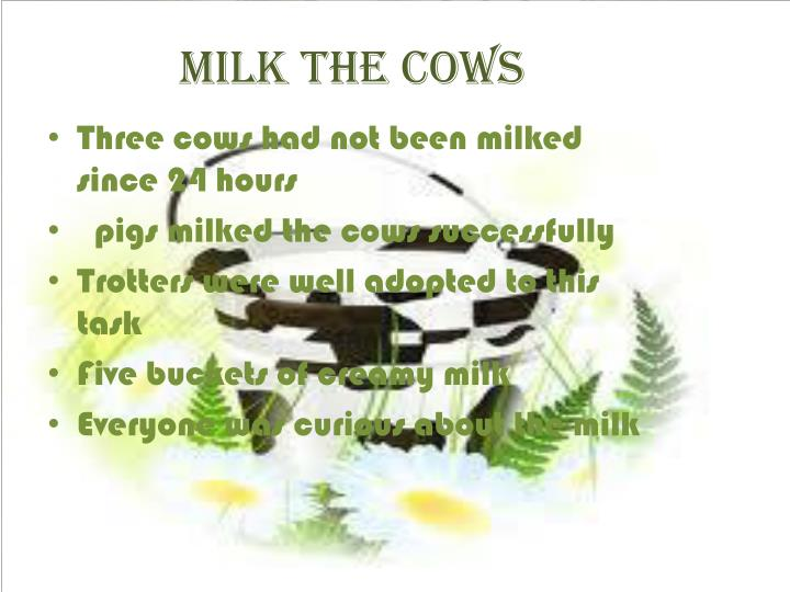 Milk the cows