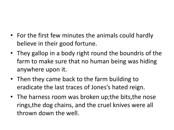 For the first few minutes the animals could hardly believe in their good fortune.