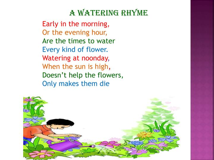 Mother Goose Rhymes Nut Tree besides Five Little Monkeys as well Dt Ldrz C furthermore Goose also Ring Around The Rosy. on coloring mary quite contrary