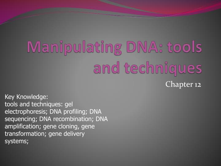 Manipulating dna tools and techniques