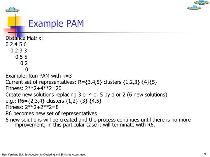 Example PAM