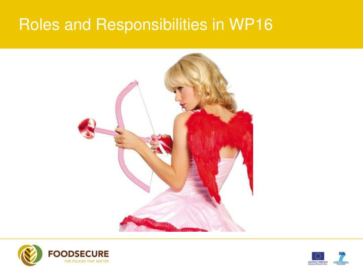 Roles and Responsibilities in WP16