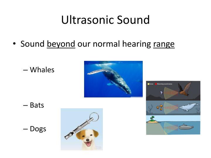 Ultrasonic Sound